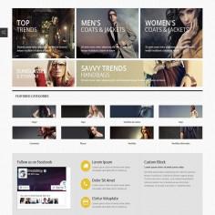 Categorías destacadas en la página de inicio - Promociona o destaca las categorías y/o subcategorías seleccionadas en tu tienda